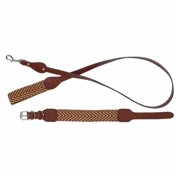 Hondenriem en hondenhalsband bruin