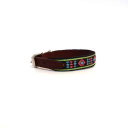 Gekleurde hondenhalsband