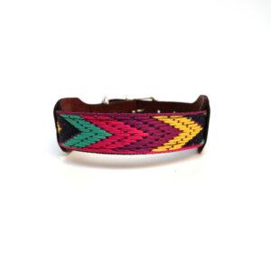 Hondenhalsband met gestreepte kleuren