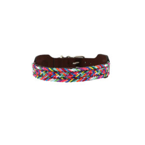 Hondenhalsband multikleur S