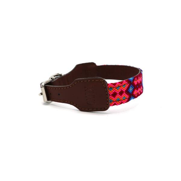 Hondenhalsband roze en blauw