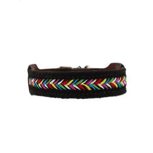 Hondenhalsband zwart