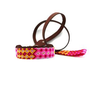 Hondenhalsband en riem