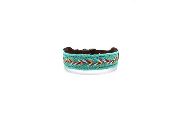 Hondenhalsband turquoise