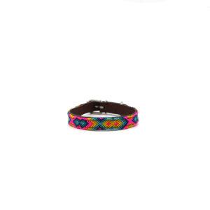 Halsband puppy multikleur