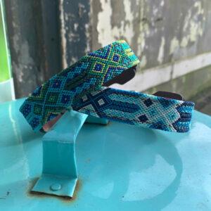 Blauwe hondenhalsbanden
